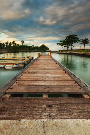 Jetty in Anyer Water Sky Cloud - Sky Wood - Material The Way Forward Direction Tree Nature Pier Plant No People Tranquil Scene Lake Diminishing Perspective Tranquility Beauty In Nature Jetty Sunset Scenics - Nature Outdoors Wood Long Wood Paneling Swimming Pool Anyer