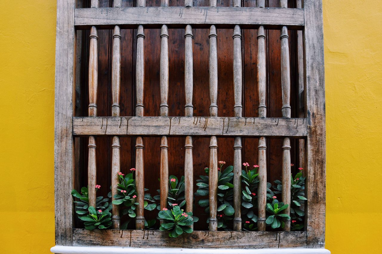 Plants At Wooden Window Of House