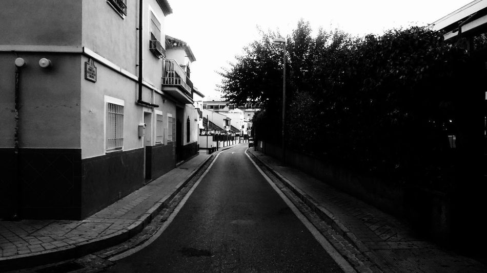 Building Exterior Architecture Built Structure Tree City Plant Street Transportation Direction The Way Forward Building Sky Nature No People Outdoors Residential District Day Road Empty Clear Sky Long Monochrome Blancoynegro Blackandwhite