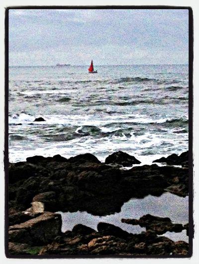 EyeEm Porto EyeEm Nature Lover Seaside EyeEm Best Shots