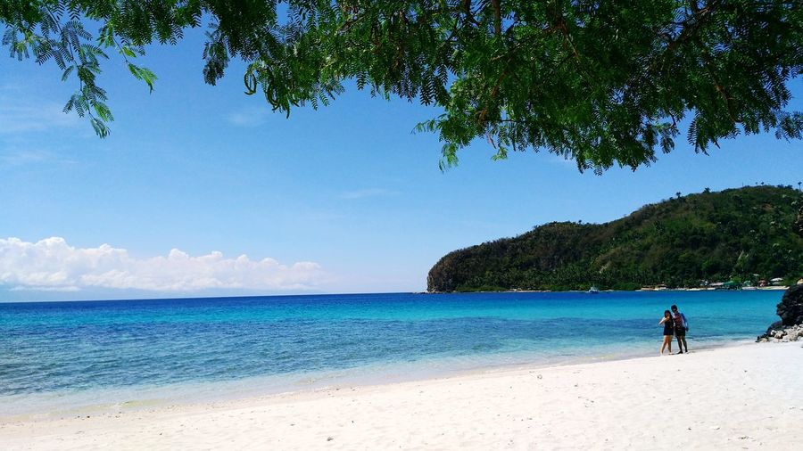 White Beach Masasa Philippines Batangas WhiteSandBeach Festive Summer Tree Water Sea Full Length Beach Sand Summer Blue Sky Horizon Over Water Coconut Palm Tree Island Coastline Ocean Coast Calm Shore Seascape Bay Of Water