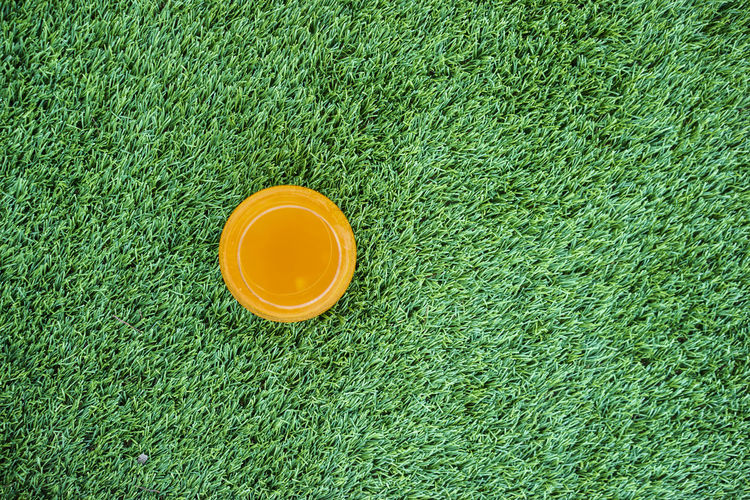 Directly above shot of frisbee on grass