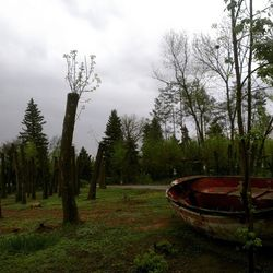 волжский парк гидростроитель Vlz