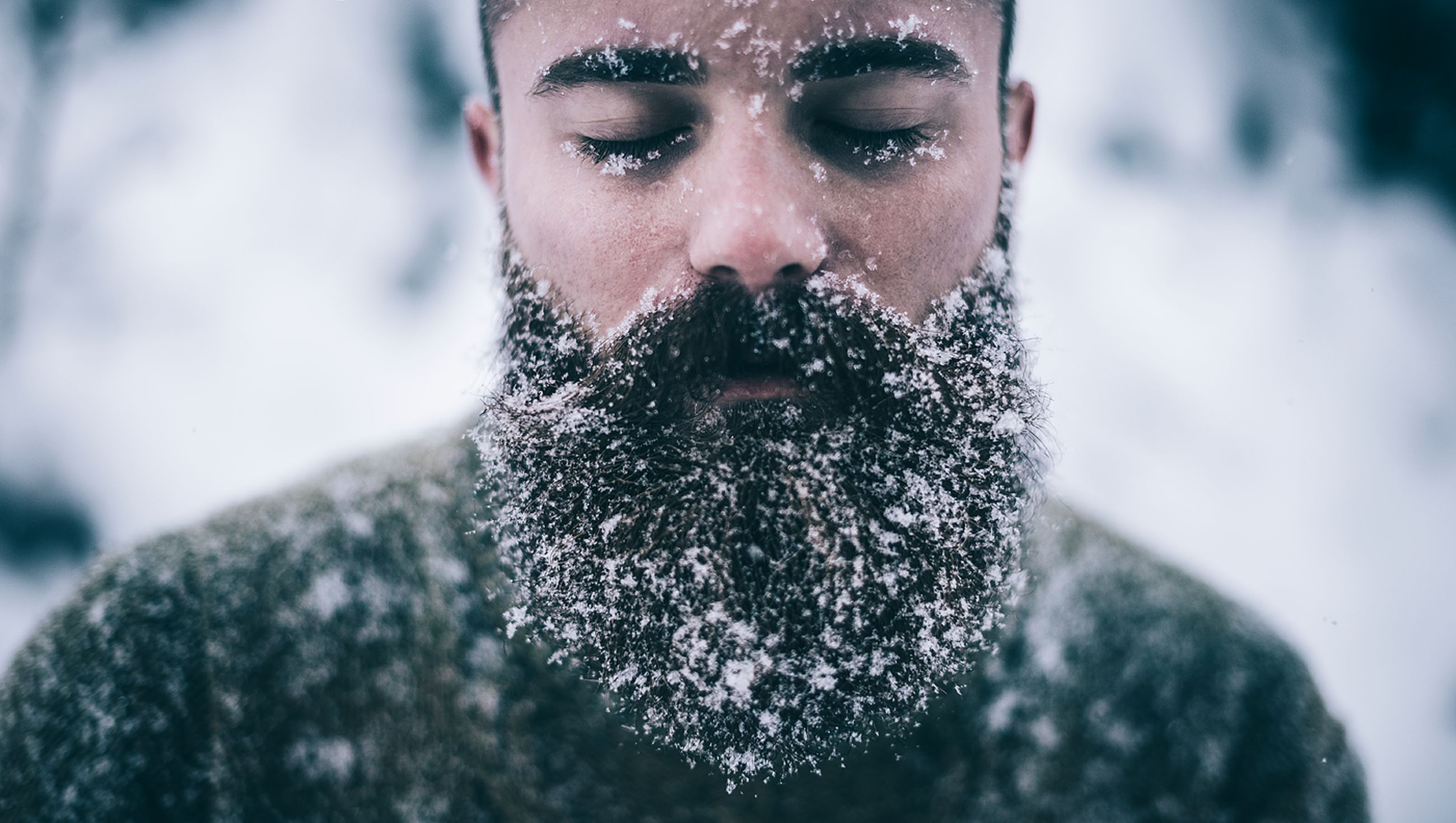 focus on foreground, close-up, looking at camera, portrait, front view, lifestyles, selective focus, cold temperature, leisure activity, winter, headshot, day, one animal, outdoors, covering, animal themes, nature, snow