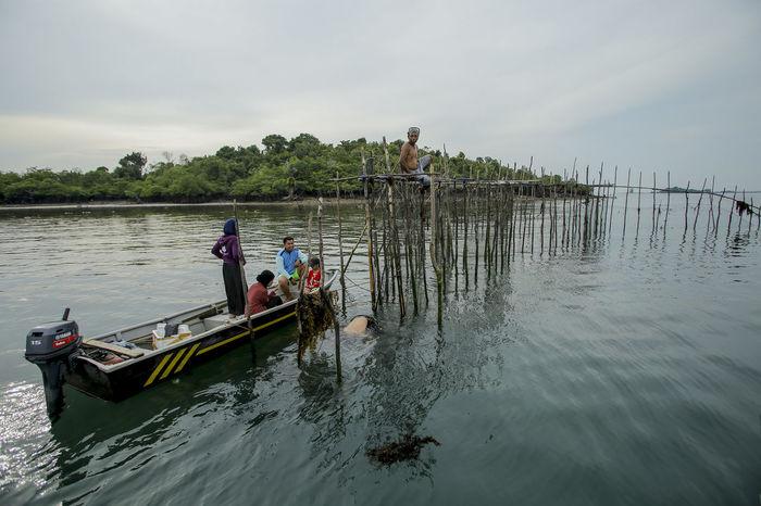 five fishermen Batam Island Adventure Batam-Indonesia Budayaindonesia Culture Nature Outdoors People Water