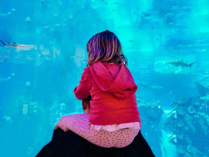 Water Child Leisure Activity Animal Wildlife Childhood Animals In Captivity Amazed Aquarium