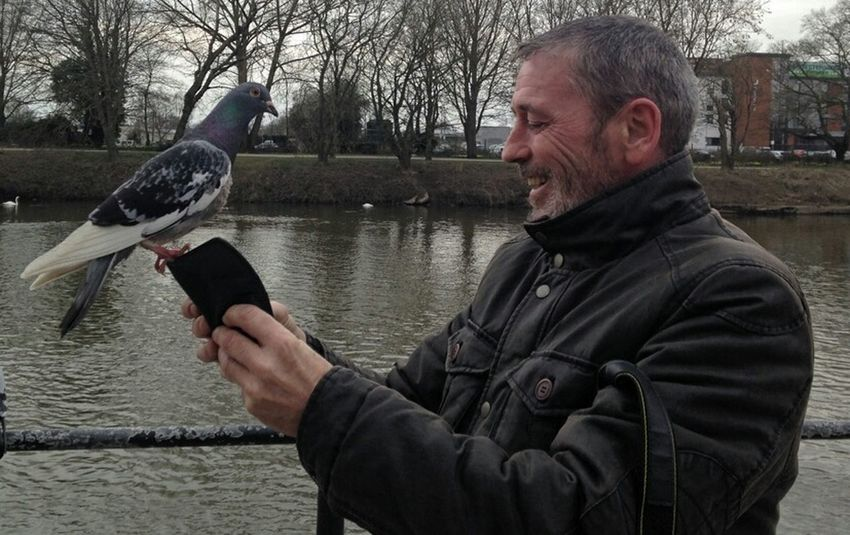 Taking Photos Hi! Worcestershire Uk Watch The Birdy Photo Bombed Pigeons A Birds's Eye View