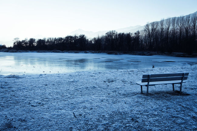 Travel Destinations Switzerland Winter Tranquil Scene Water Tree Tranquility Scenics - Nature Beauty In Nature Snow Nature Lake Seat Cold Temperature Sky No People Plant Frozen Bench Environment Non-urban Scene Outdoors