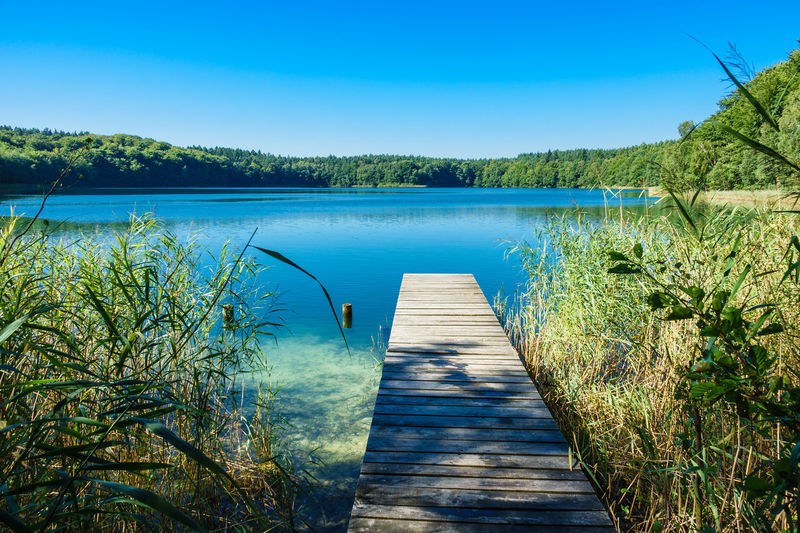 Jetty over lake in summer