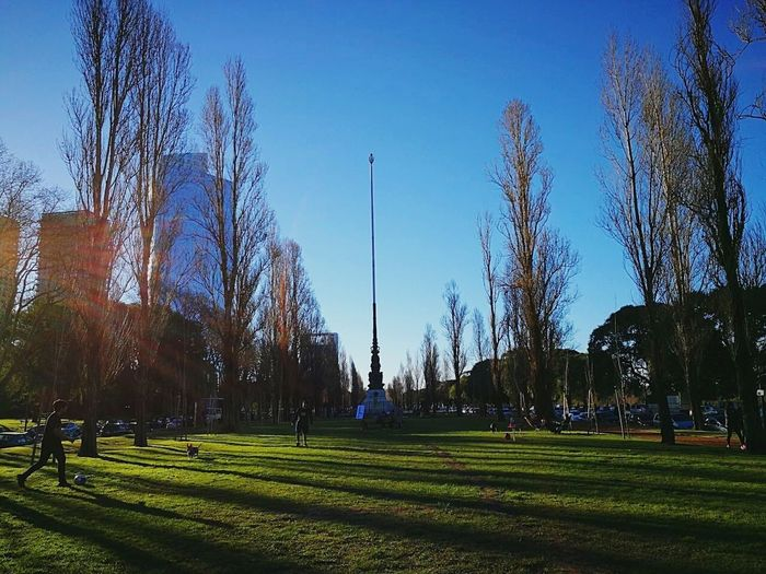 Panoramic view of park against blue sky