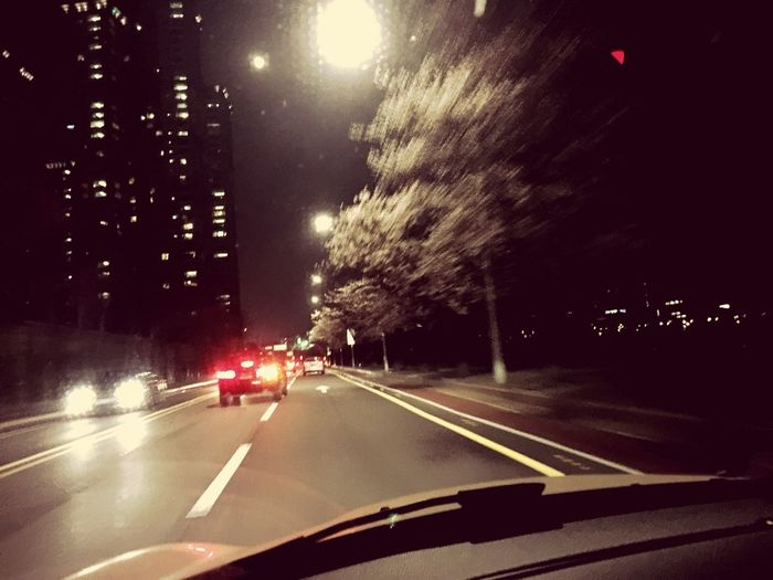 Relaxing Cherry Blossoms Drive Travel Photography Taking Photos Photo Photography Enjoying Life Discover Your City Hello World