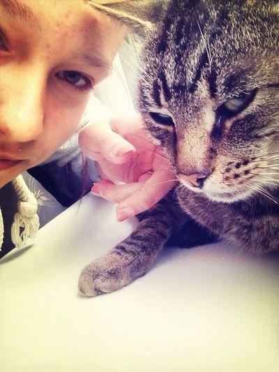 семен Cat