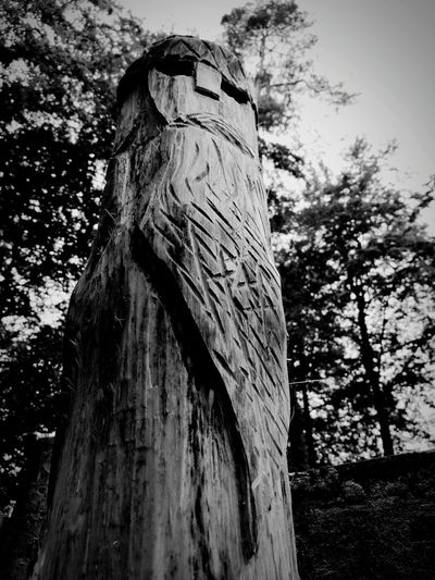 Tree Tree Trunk Day History Low Angle View No People Nature Outdoors Built Structure Branch Growth Architecture Ancient Civilization Close-up EyeEm Selects Middle Ages Slavic Slavs Figure Architecture Small Business Heroes The Photojournalist - 2018 EyeEm Awards The Great Outdoors - 2018 EyeEm Awards