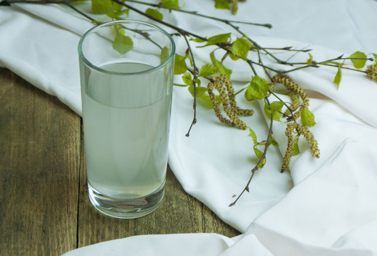 a glass of birch SAP Birch Birch Sap Diet Drinking In The Afternoon Fresh Fruit Bowl Freshness Glass Health Healthy Food Natural Nature Vegetarianism Food And Drink Freshness Juice Objects Vitamins Birch Juice Food Food And Drink Freshness Nature No People No People, Spring Flowers