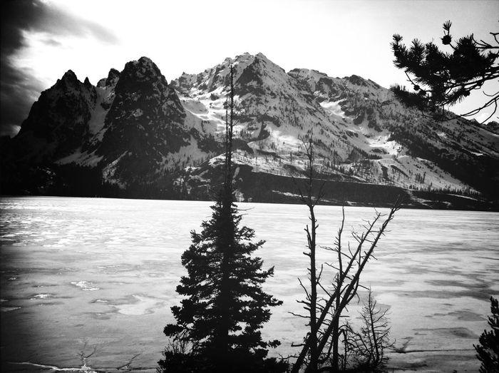 Black And White Black & White NEM Black&white Eye Em Nature Lover Feel The Journey Original Experiences