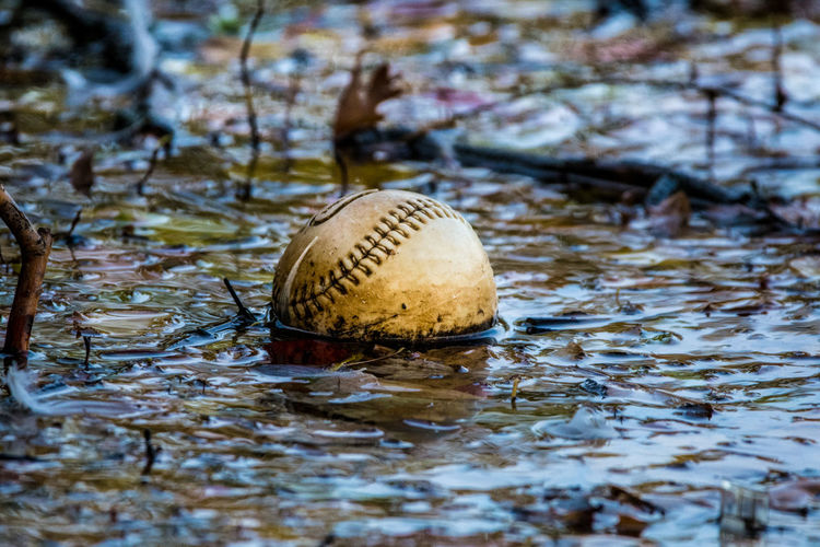 Close-up of ball in puddle