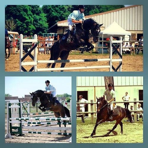 Sanghadestrelles Sangha Celessablons Cso concours poney mon cheval est dingue !