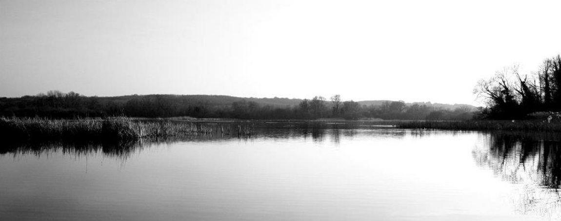 Blackandwhite Lakes  Landscape Water Reeds