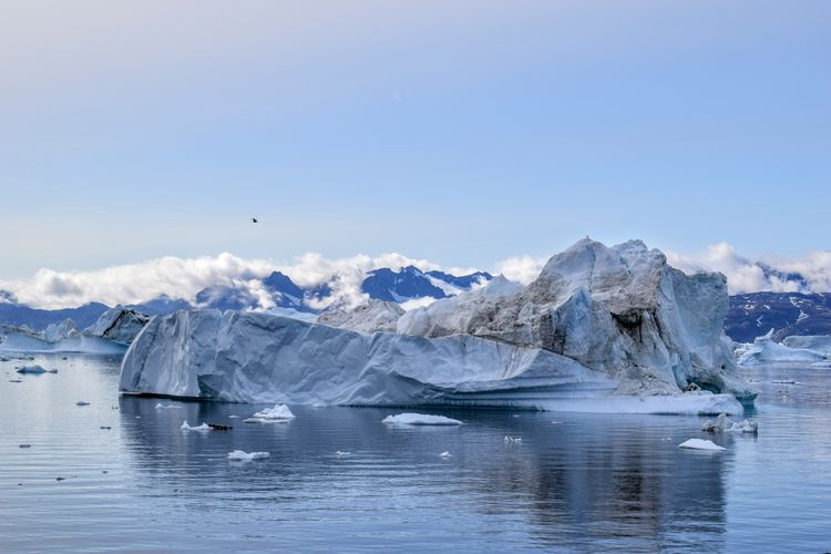 summer in Greenland Greenland Icebergs Beauty Beauty In Nature Day Landscape Nature No People Outdoors Scenery Scenics Water NIKON D5300 Cold Temperature Ice Iceberg Sea Glacier Fresh On Market 2017