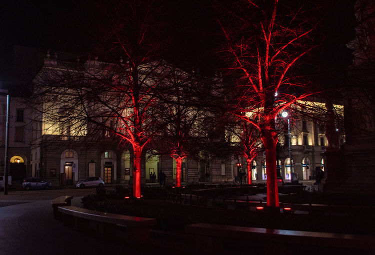 Tree Architecture Building Exterior Night Built Structure Illuminated City Bare Tree Plant No People Building Nature Red Street Outdoors Sky Branch Dark Street Light Footpath La Scala Di Milano The Street Photographer - 2019 EyeEm Awards