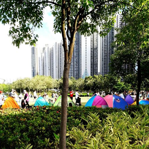 Summer Hang Hau Park - Man Made Space Tent Camping