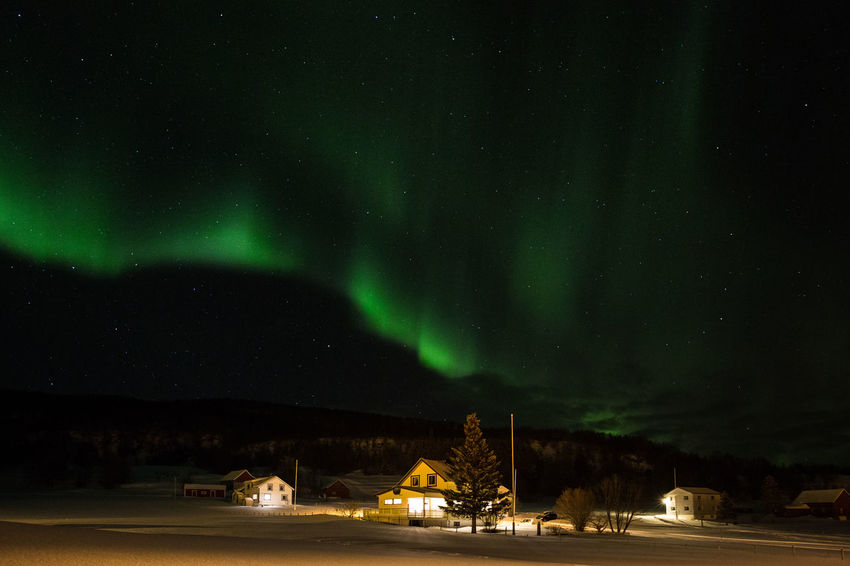 Arctic Astronomy Atmosphere Atmospheric Mood Aurora Aurora Borealis Cold Dark Darkness Glowing Green Color Houses Illuminated Infinity Light In The Darkness Mystery Night Polar Lights Nature's Diversities Space Northern Lights Star Field Stars Winter The Great Outdoors - 2016 EyeEm Awards The Great Outdoors 2016 Finalists