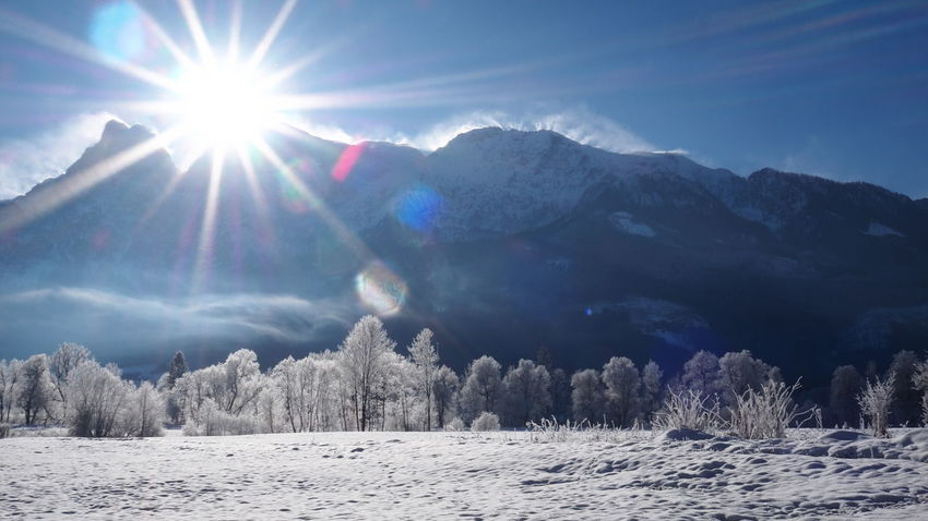 Beauty In Nature Cold Temperature Day Landscape Lens Flare Mountain Nature No People Outdoors Scenics Sky Snow Sun Sunbeam Sunlight Tranquil Scene Tranquility Tree Weather Winter