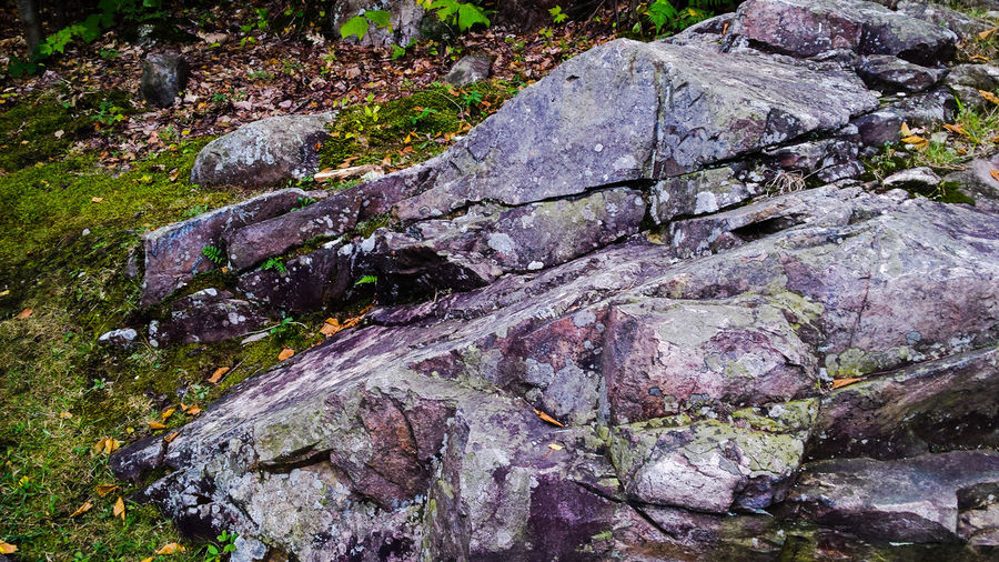 Rocks Crusty