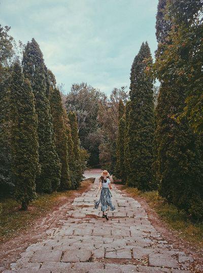 Woman on footpath amidst trees against sky