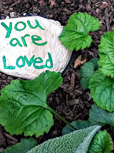 Truth on a stone ~ Loving The Landscape Color Of Life Freshness Beauty In Nature Happiness City Garden Nature Lover Portland Maine No People Tranquility Gardenlover Taking A Walk Love Fall Leaf Communication Text Close-up Green Color Written Green Western Script