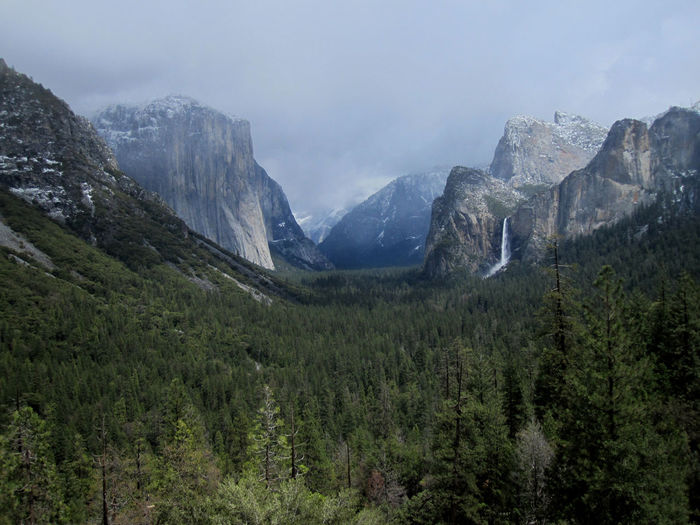 USA Yosemite National Park Snow Snowy Mountain Environment Landscape Nature Land Sky Plant Wilderness Mountain Peak Beauty In Nature Tree Scenery Scenics - Nature No People Mountain Range Rock Outdoors Valley Day Pine Tree Coniferous Tree High