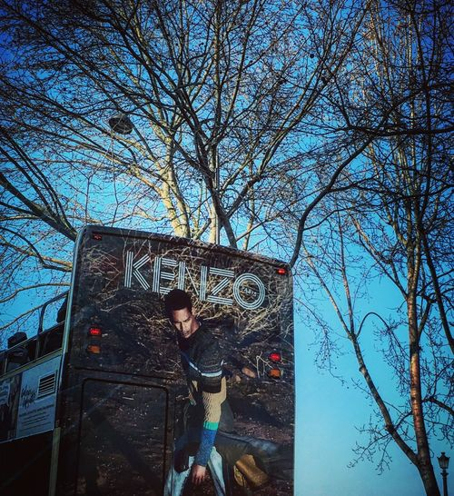 Kenzo Advertising Kenzo Paris Walking Around Trees Sunny Day Blue Sky Light And Shadow Mmaff From My Point Of View Eye4photography  EyeEm Gallery