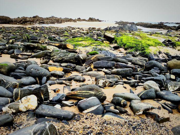 Being A Beach Bum Sea Stones