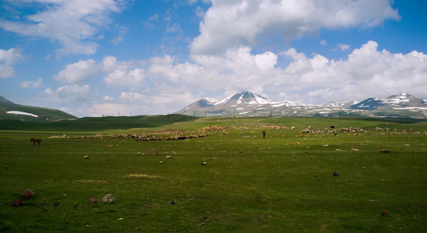 shepherd on the early spring Cloud - Sky Clouds And Sky Documentary Photography Early Spring Freshness Green Grass 🌱 Landscape_photography Lanscape Lightring Mountains Nature Nature Photography Outdoors Outdoors Photograpghy  Sheep Shepherd Snow ❄ Spring Spring Light Springtime