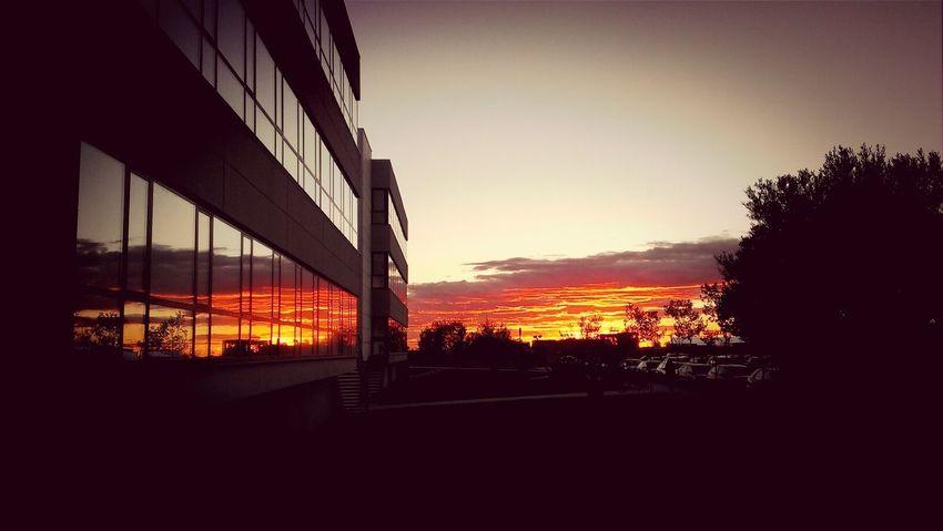 Sun_collection Sunset Landscape Urjc