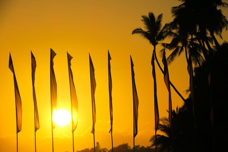 Flags and coconut tree silhouettes during island sunset on Alona beach Alona Background Photography Beach Background Beach Holiday Coconut Tree Exotic Exotic Island Flag Pole Flags In The Wind  Getaway  Golden Sun Golden Sunset Island Holiday Island Life Island Living Island Resort Island Vacation It's More Fun In The Philippines Orange Sunset Panglao Resorts Sunset Background Tropical Beach Tropics Visayas
