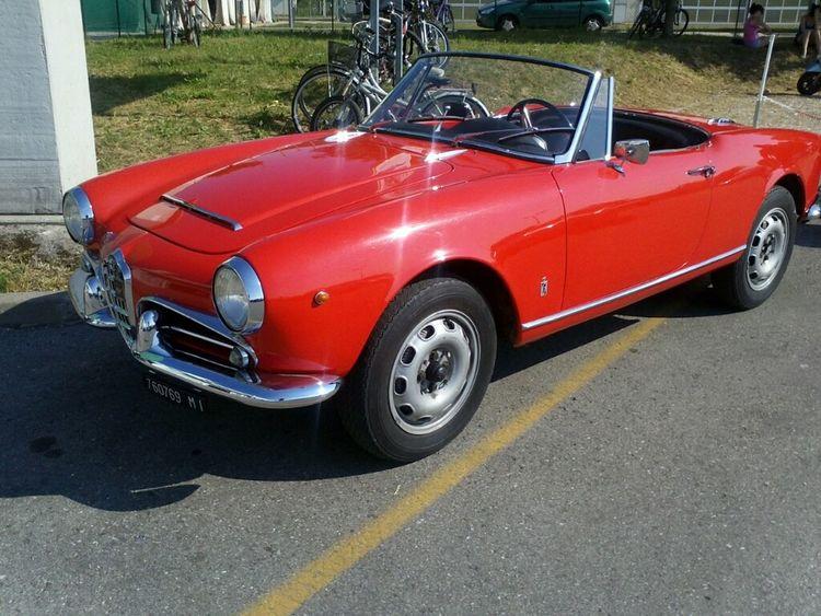 Vintage Cars Alfa Romeo