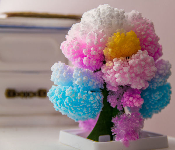 Close-up Colourful Colours Crystal Crystals Indoors  No People Pink Color Tree