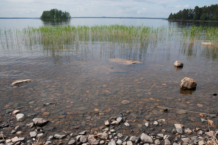 Beauty In Nature Day Grass Lake Nature No People Outdoors Scenics Sky Tranquility Water Kukkosensaari Finland Joensuu