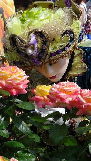 Congrès mondial de la rose - Lyon - juin 2015 Flowers Fleurs Lyon -