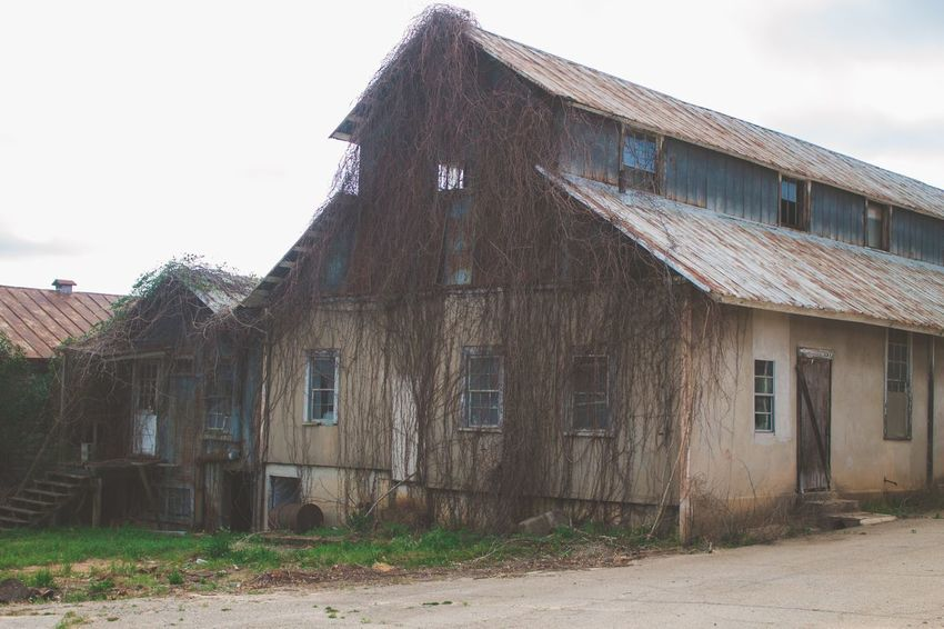 Abandoned Places Abandoned Architecture Built Structure Building Exterior Abandoned House No People Sky Run-down Barn Wood - Material Rural Scene Old-fashioned Window Outdoors
