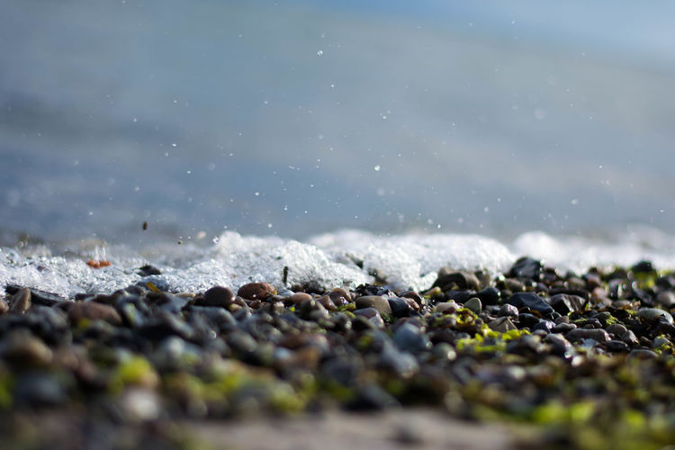 Small stones in the water Green Beach Beauty In Nature Close-up Day Land Motion Nature No People Outdoors Pebble Rock Rock - Object Rocks Rocks And Water Sea Selective Focus Solid Stone Stone - Object Stones Stones & Water Surface Level Water Waterdrops