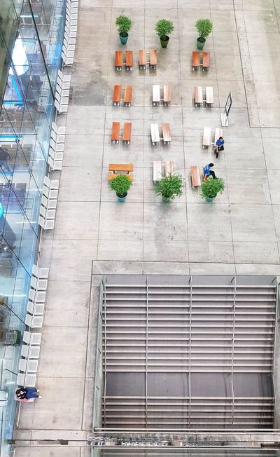 waiting Potted Plant Indoor Plants Indoors Trees Waiting Airport Waiting Airport Airportphotography Bird Eye View From Above  Bench Seat Benches Waiting Area Chairs Seats Seat High Angle View City Steps And Staircases Stairs Hand Rail Staircase Stairway