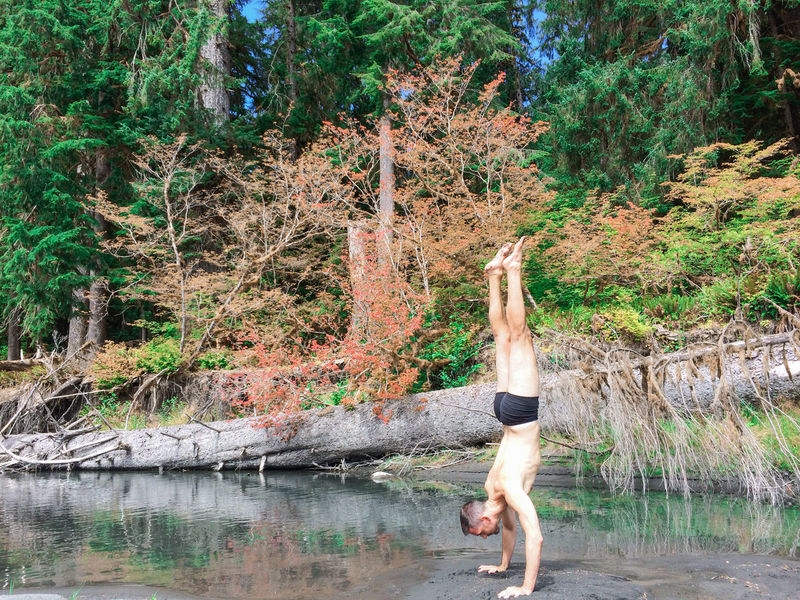 Man wearing underwear doing a handstand in the forest Adult Beauty In Nature Day Evergreen Flexibility Forest Forest Photography Full Length Growth Handstand  Landscape Nature One Person Outdoors People Real People Strength Tranquil Scene Tranquility Tree Underwear Model Water Yoga Young Adult