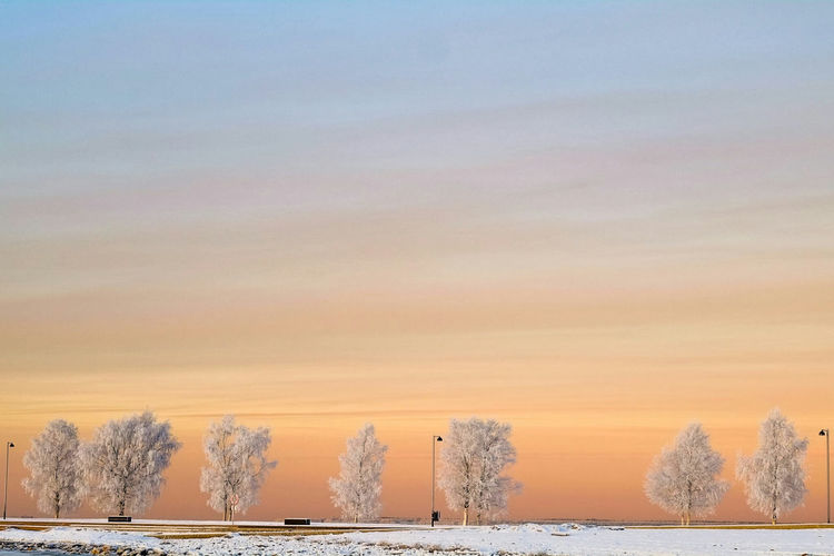 Fujifilm_xseries Winter 65degreesnorth Finland Nophotoshop Sunset Nofilter Snow Frost