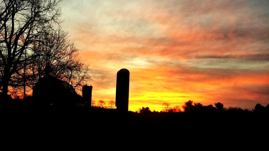 Breaking The Mold Oldfarmhouse Oldfarm Sunset Dramatic Sky War Outdoors Architecture Built Structure No People Tree Sky Grass Day Politics And Government Nature City EyeEm Different Perspective Low Angle View EyeEm Gallery My Point Of View Break The Mold Agriculture Recreationtherapy
