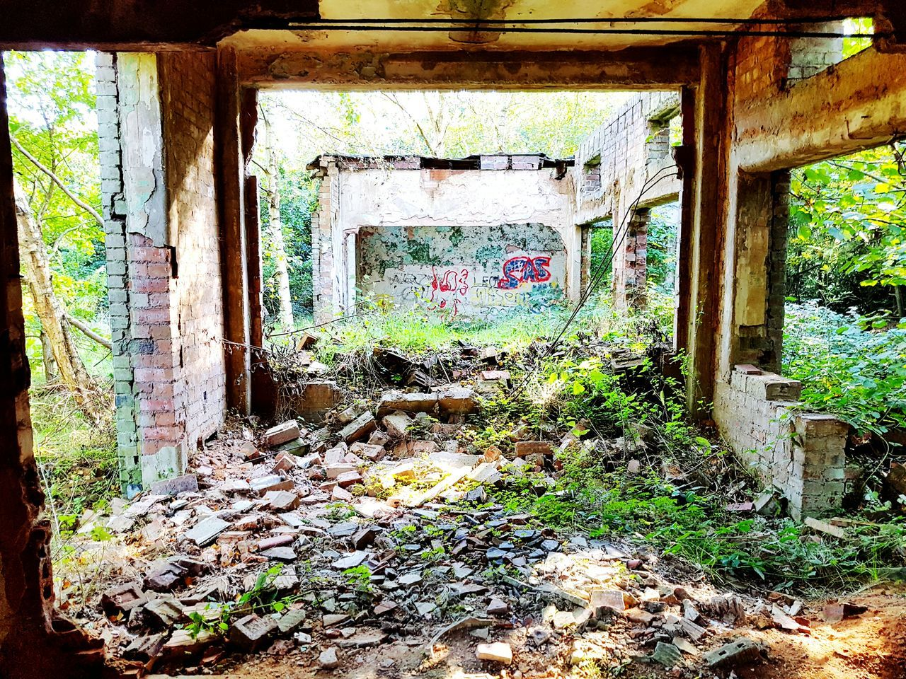 window, abandoned, day, architecture, no people, built structure, indoors, multi colored, tree
