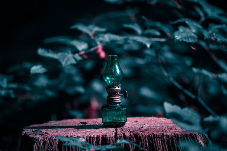 Magic Lantern (1/3) The Creative - 2018 EyeEm Awards Close-up Focus On Foreground Green Color Incense Lamp Lighting Equipment Magic Motion Nature No People Outdoors Plant Selective Focus Still Life Table Tree