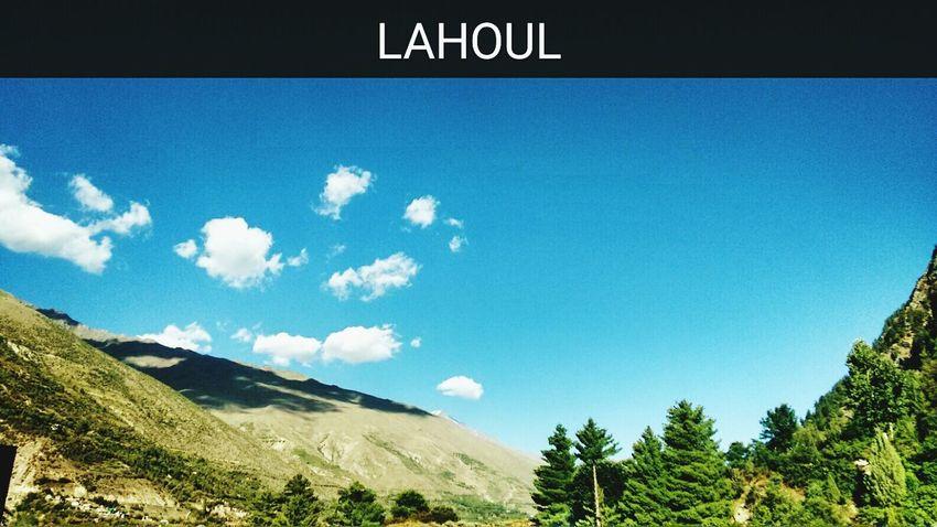 Himalayas Himachalpradesh Lahoul Green Green Green!  Nature Photography Naturelovers Explore Himachal