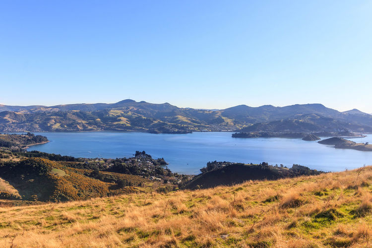 The settlement of Broad Bay is located on the Otago Harbour coast of Otago Peninsula, in the South Island of New Zealand. https://en.wikipedia.org/wiki/Broad_Bay,_New_Zealand Sky Scenics - Nature Beauty In Nature Clear Sky Blue Nature Landscape Broad Bay Otago Peninsula New Zealand